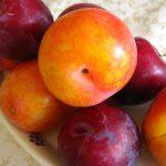 Confettura di prugne gialle, rosse e pesche